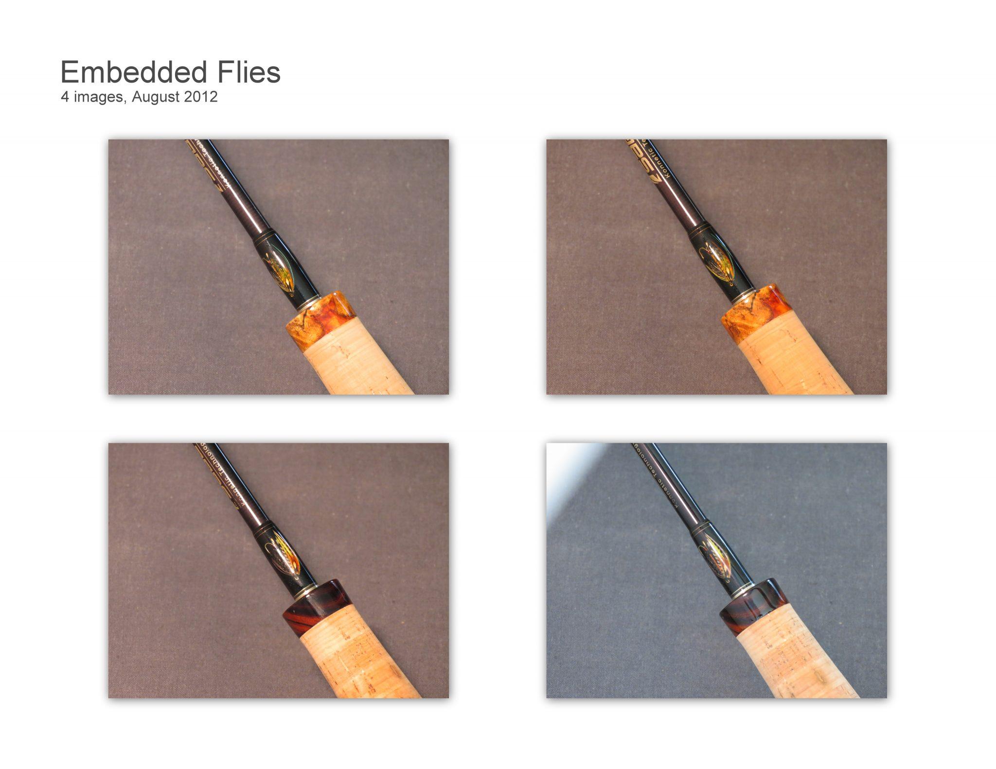 Embedded Flies