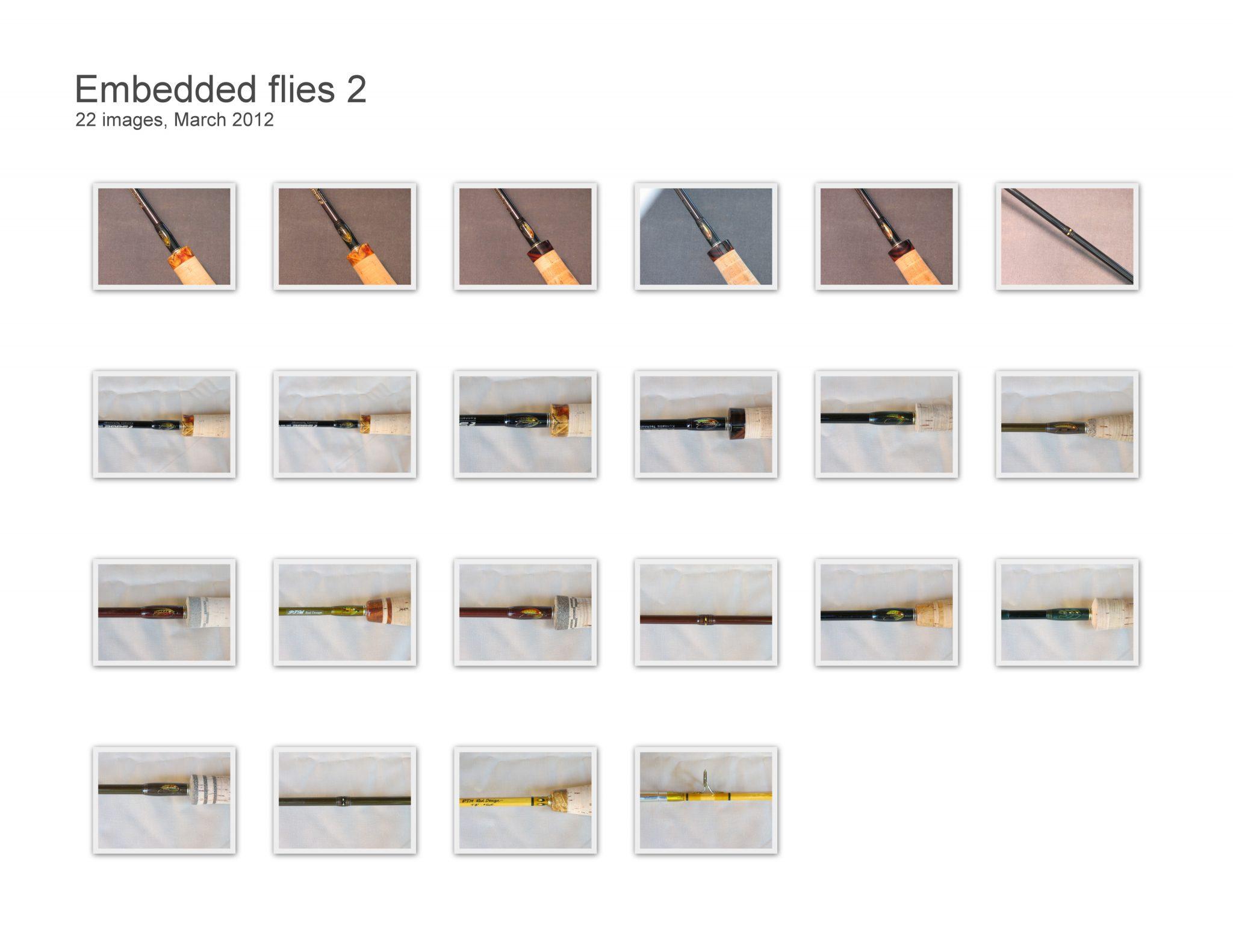 Embedded flies 2